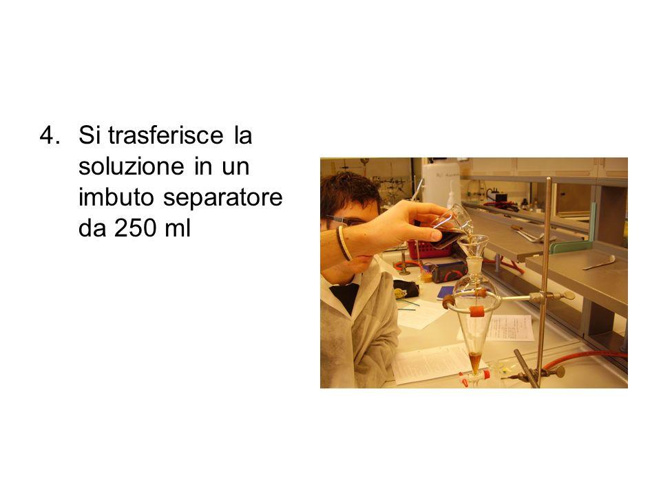 4.Si trasferisce la soluzione in un imbuto separatore da 250 ml