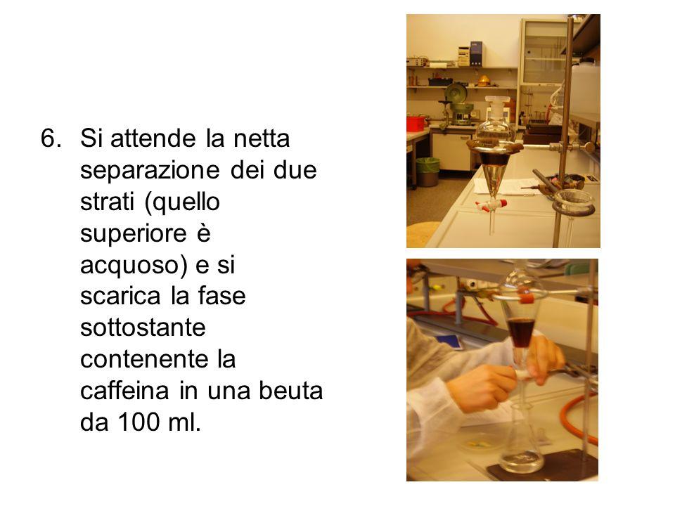 6.Si attende la netta separazione dei due strati (quello superiore è acquoso) e si scarica la fase sottostante contenente la caffeina in una beuta da
