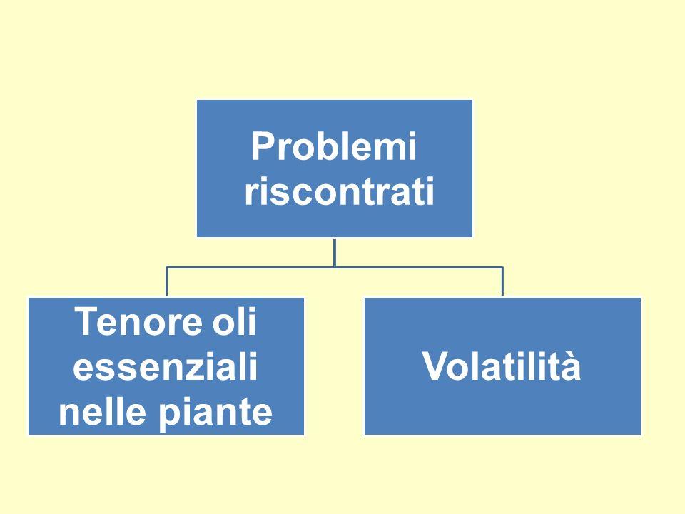 Problemi riscontrati Tenore oli essenziali nelle piante Volatilità