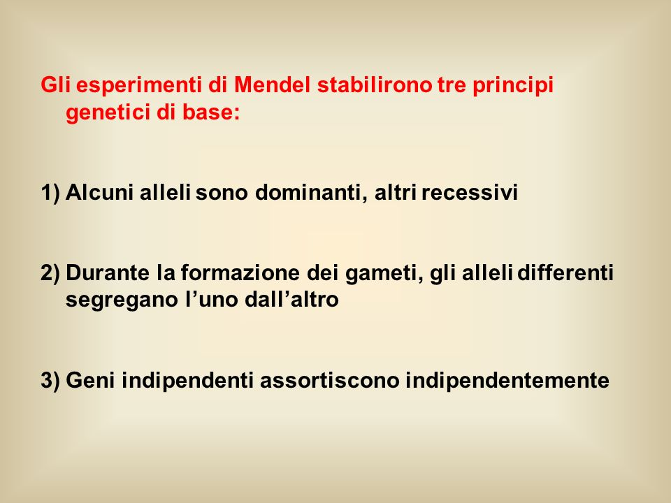 Gli esperimenti di Mendel stabilirono tre principi genetici di base: 1)Alcuni alleli sono dominanti, altri recessivi 2)Durante la formazione dei gamet