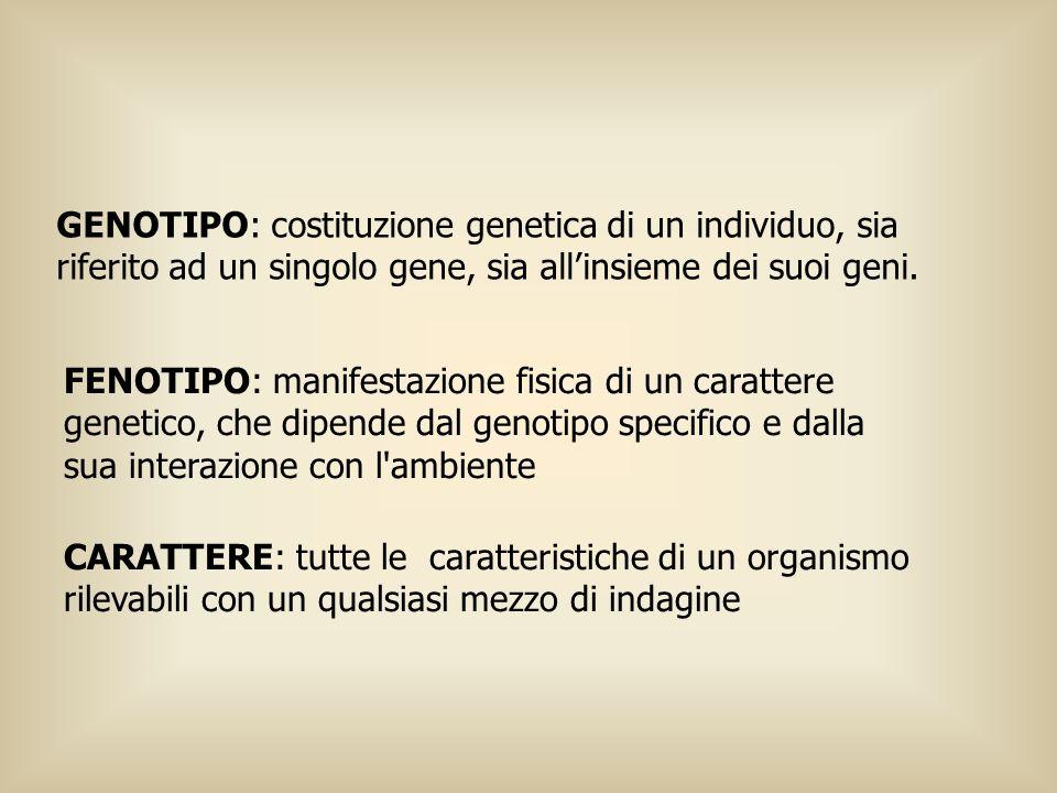 GENOTIPO: costituzione genetica di un individuo, sia riferito ad un singolo gene, sia allinsieme dei suoi geni. FENOTIPO: manifestazione fisica di un