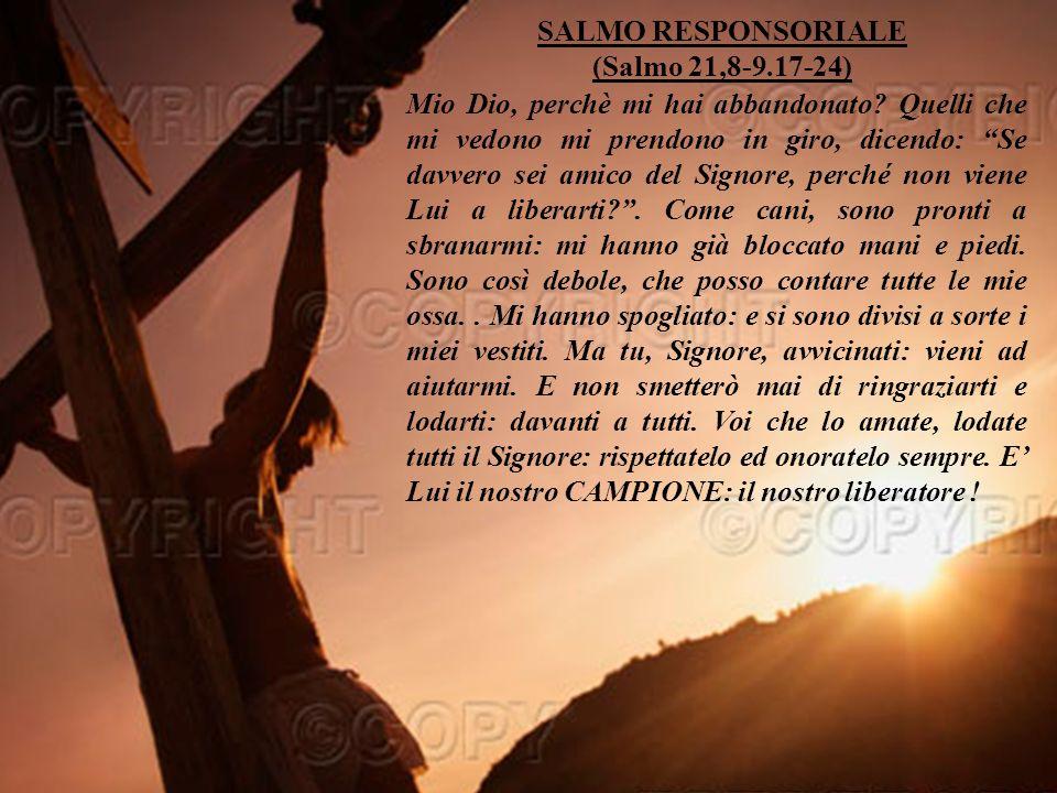 Sottofomdo musicale: We are the champions (queena) Buona domenica da Antonio Di Lieto (www.bellanotizia.it) Ora che hai ascoltato la Mia Parola, rispondimi … Per approfondire la bellanotizia premi qui F I N E