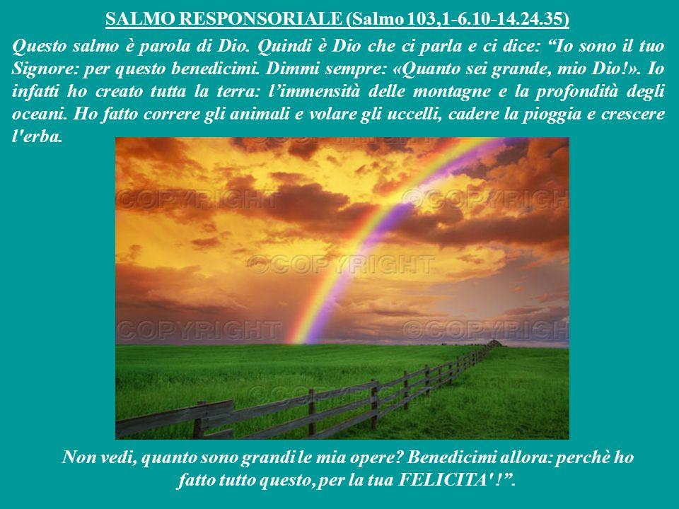 SALMO RESPONSORIALE (Salmo 103,1-6.10-14.24.35) Questo salmo è parola di Dio.