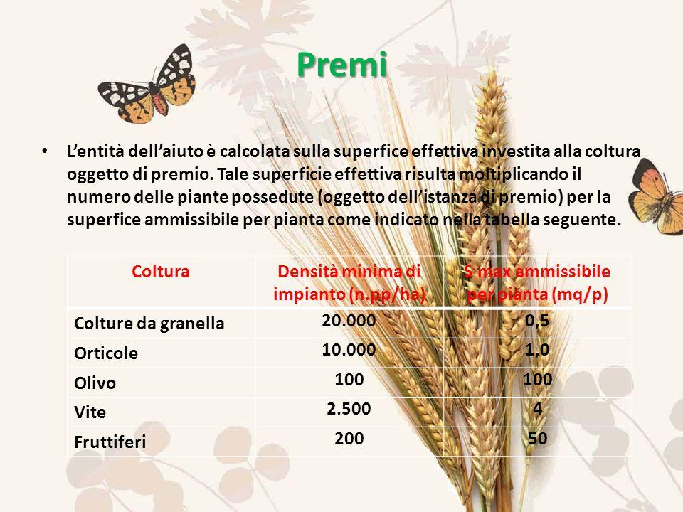 Lentità dellaiuto è calcolata sulla superfice effettiva investita alla coltura oggetto di premio.