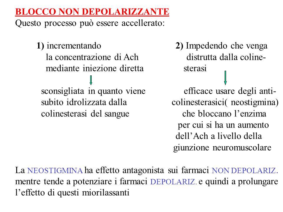 BLOCCO NON DEPOLARIZZANTE Questo processo può essere accellerato: 1) incrementando 2) Impedendo che venga la concentrazione di Ach distrutta dalla col