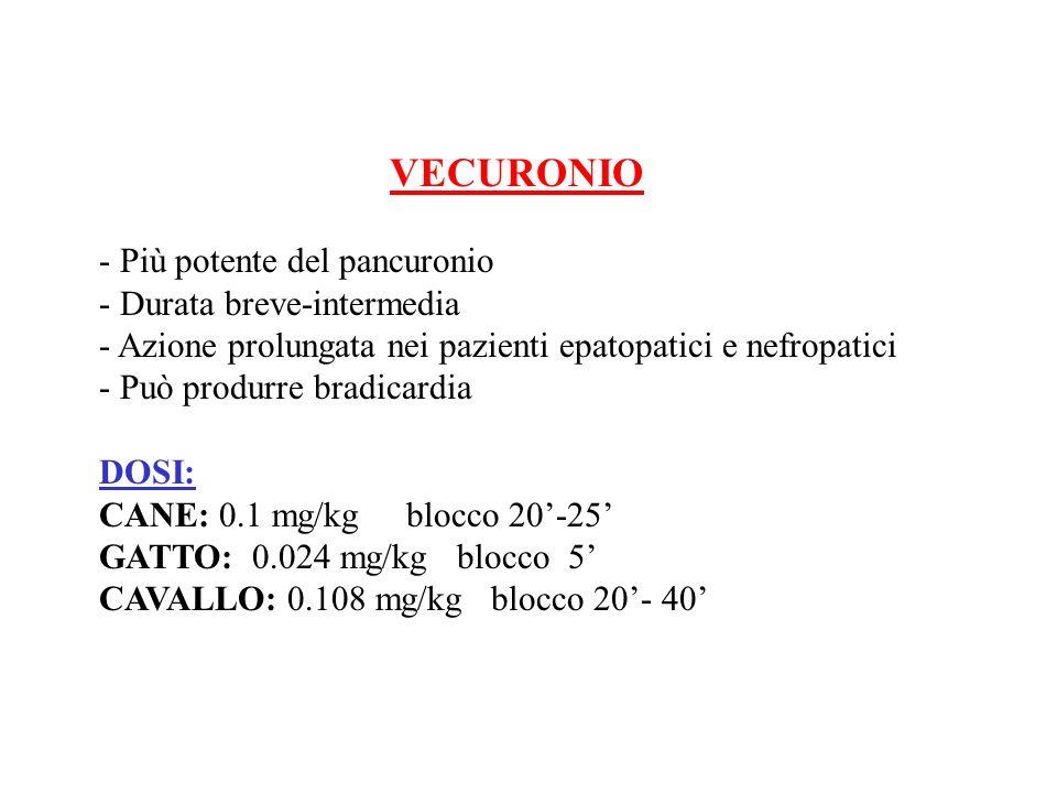 VECURONIO - Più potente del pancuronio - Durata breve-intermedia - Azione prolungata nei pazienti epatopatici e nefropatici - Può produrre bradicardia