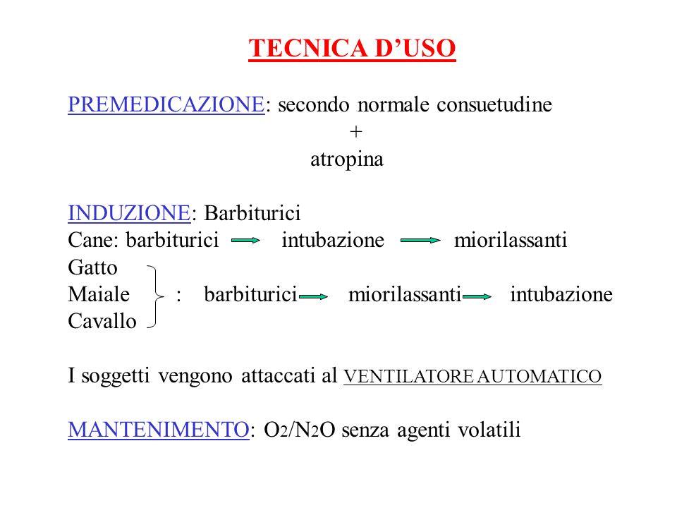 TECNICA DUSO PREMEDICAZIONE: secondo normale consuetudine + atropina INDUZIONE: Barbiturici Cane: barbiturici intubazione miorilassanti Gatto Maiale :