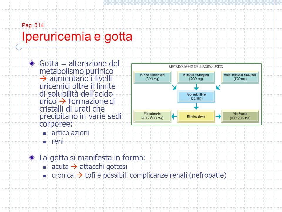 Pag. 314 Iperuricemia e gotta Gotta = alterazione del metabolismo purinico aumentano i livelli uricemici oltre il limite di solubilità dellacido urico