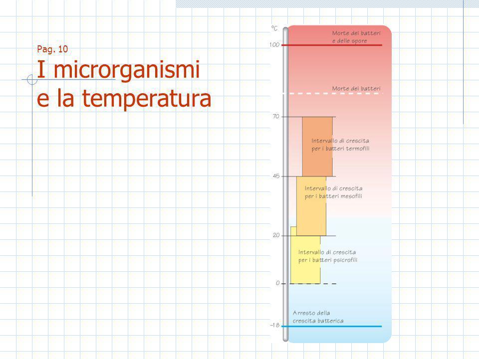 Pag. 10 I microrganismi e la temperatura