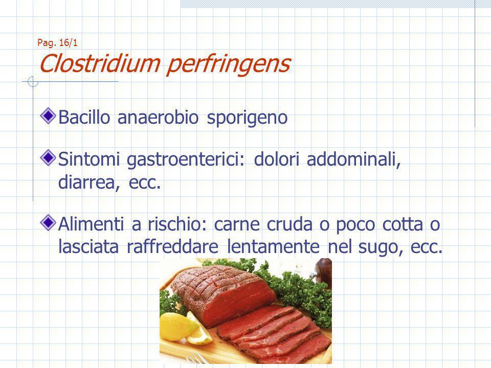 Bacillo anaerobio sporigeno Sintomi gastroenterici: dolori addominali, diarrea, ecc.