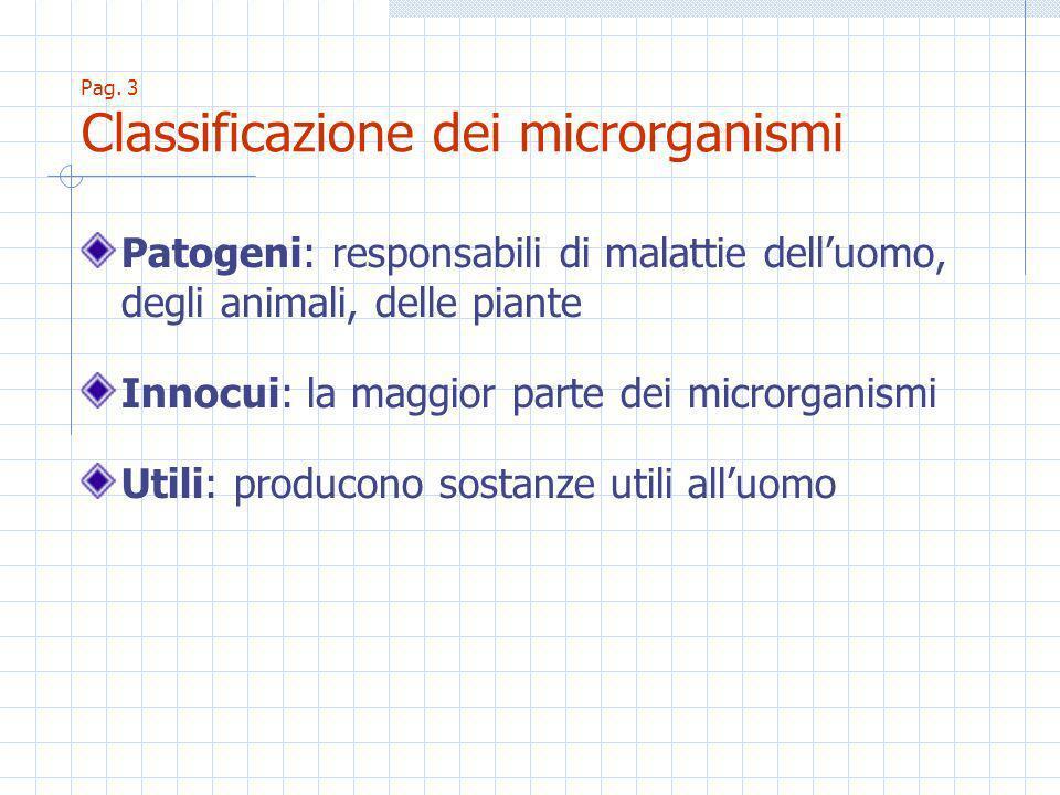 Pag. 3 Classificazione dei microrganismi Patogeni: responsabili di malattie delluomo, degli animali, delle piante Innocui: la maggior parte dei micror
