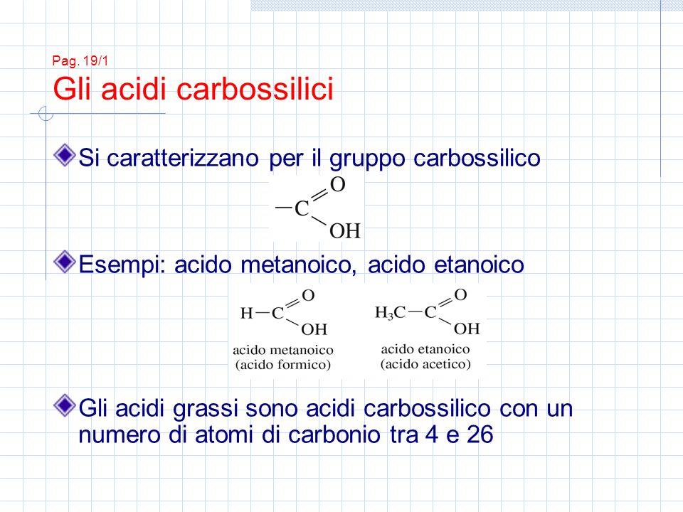 Pag. 19/1 Gli acidi carbossilici Si caratterizzano per il gruppo carbossilico Esempi: acido metanoico, acido etanoico Gli acidi grassi sono acidi carb