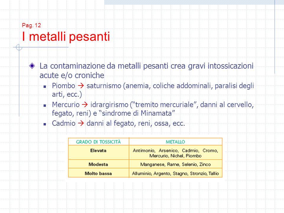 Pag. 12 I metalli pesanti La contaminazione da metalli pesanti crea gravi intossicazioni acute e/o croniche Piombo saturnismo (anemia, coliche addomin