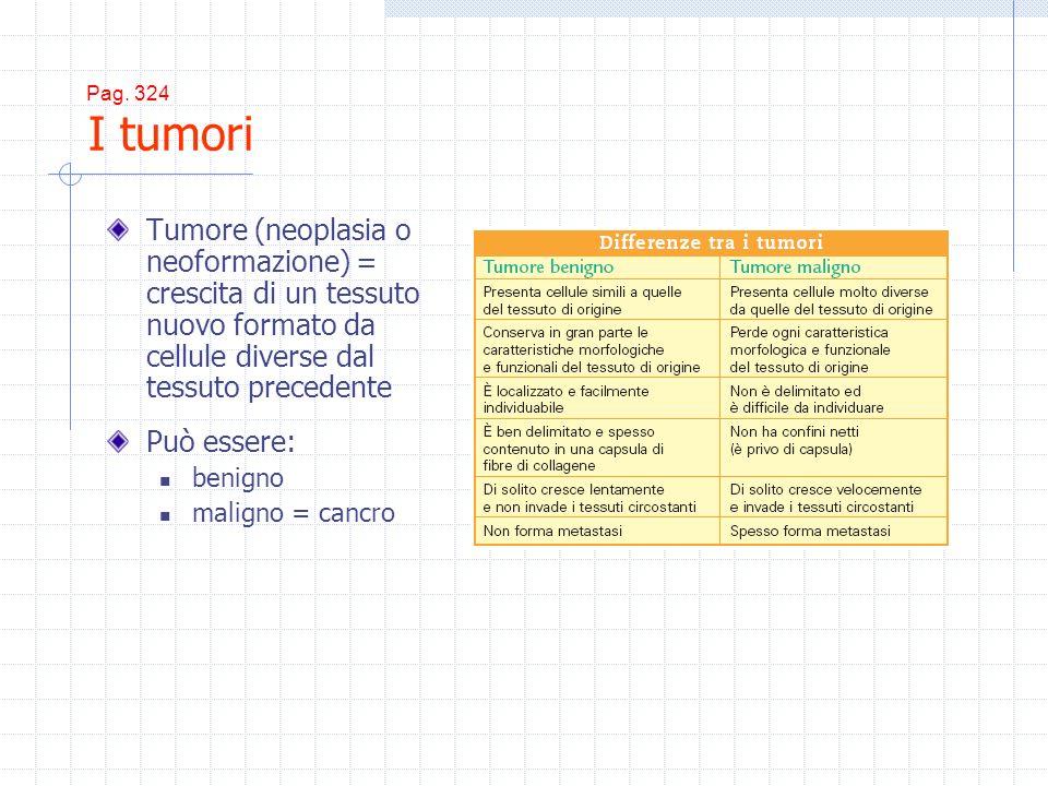 Pag. 324 I tumori Tumore (neoplasia o neoformazione) = crescita di un tessuto nuovo formato da cellule diverse dal tessuto precedente Può essere: beni