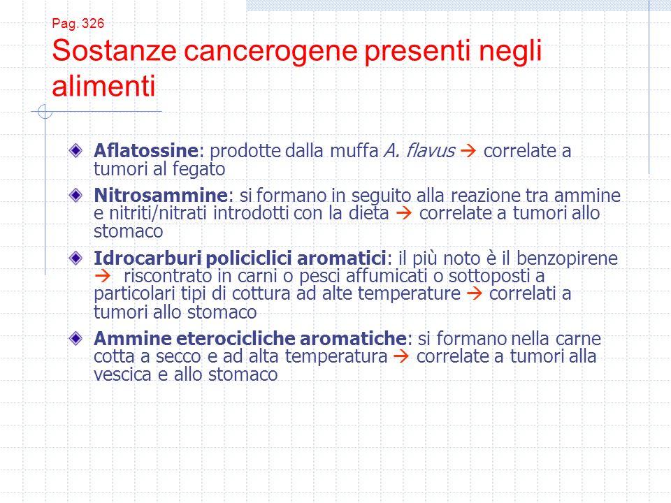 Pag. 326 Sostanze cancerogene presenti negli alimenti Aflatossine: prodotte dalla muffa A. flavus correlate a tumori al fegato Nitrosammine: si forman
