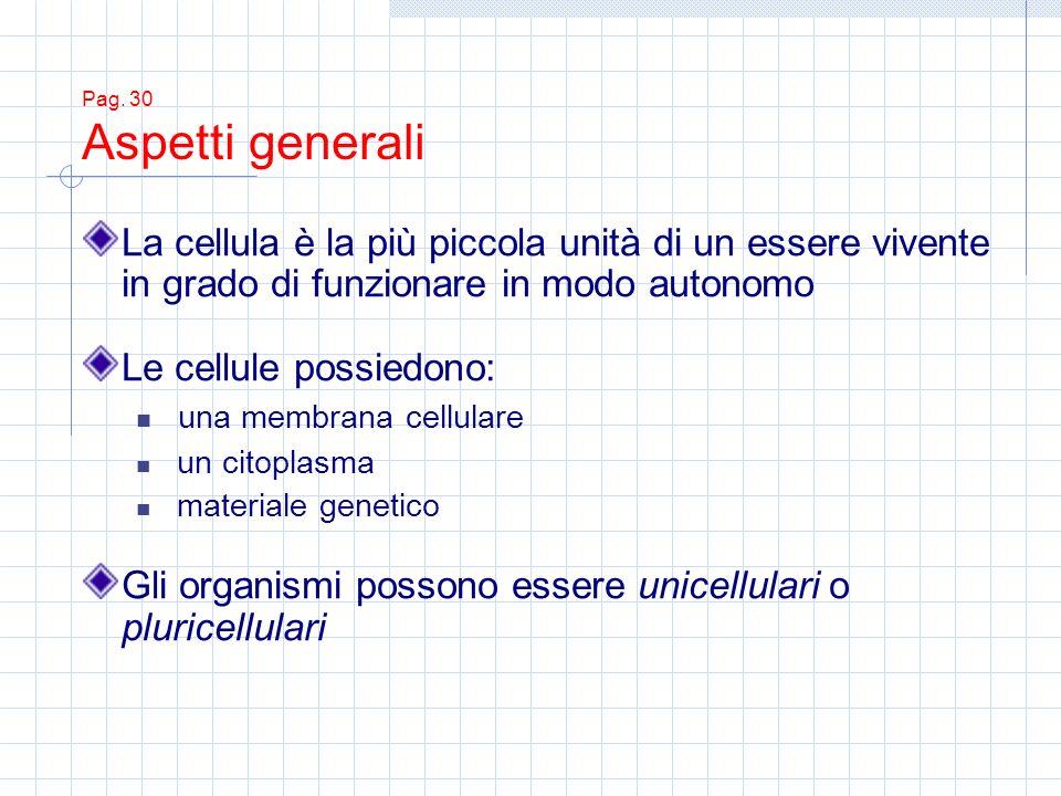 Pag. 30 Aspetti generali La cellula è la più piccola unità di un essere vivente in grado di funzionare in modo autonomo Le cellule possiedono: una mem