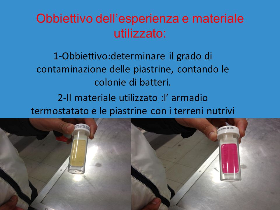 Obbiettivo dellesperienza e materiale utilizzato: 1-Obbiettivo:determinare il grado di contaminazione delle piastrine, contando le colonie di batteri.