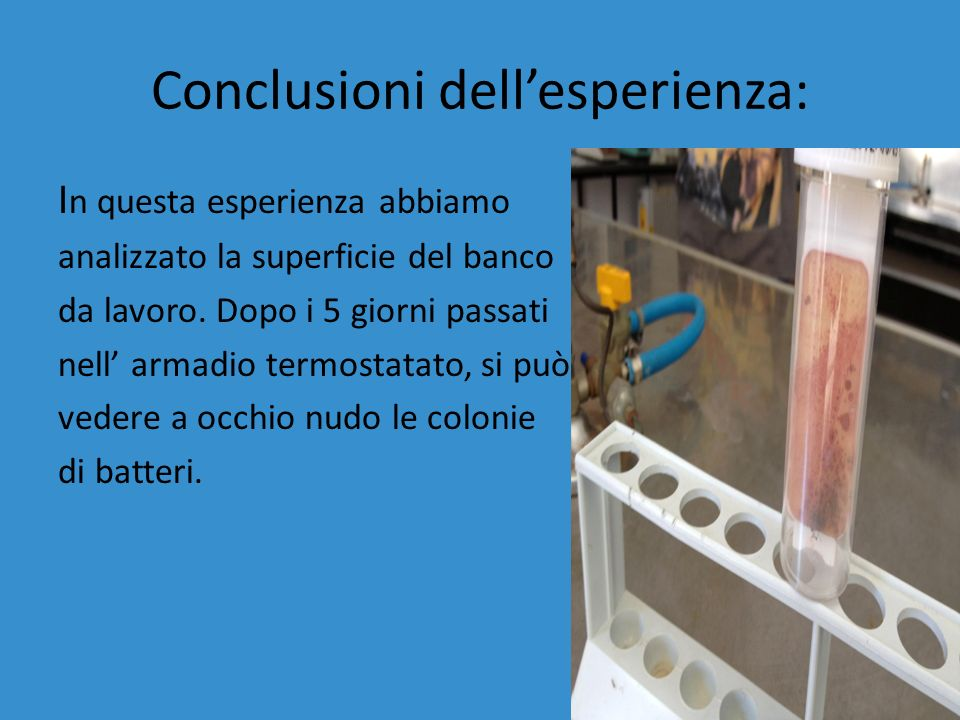 Conclusioni dellesperienza: I n questa esperienza abbiamo analizzato la superficie del banco da lavoro.
