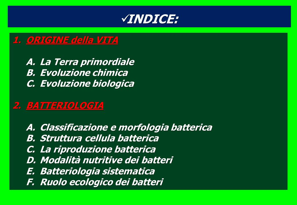 INDICE: INDICE: 1.ORIGINE della VITA A.La Terra primordiale B.Evoluzione chimica C.Evoluzione biologica 2.BATTERIOLOGIA A.Classificazione e morfologia batterica B.Struttura cellula batterica C.La riproduzione batterica D.Modalità nutritive dei batteri E.Batteriologia sistematica F.Ruolo ecologico dei batteri