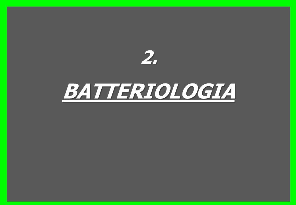 2.BATTERIOLOGIA