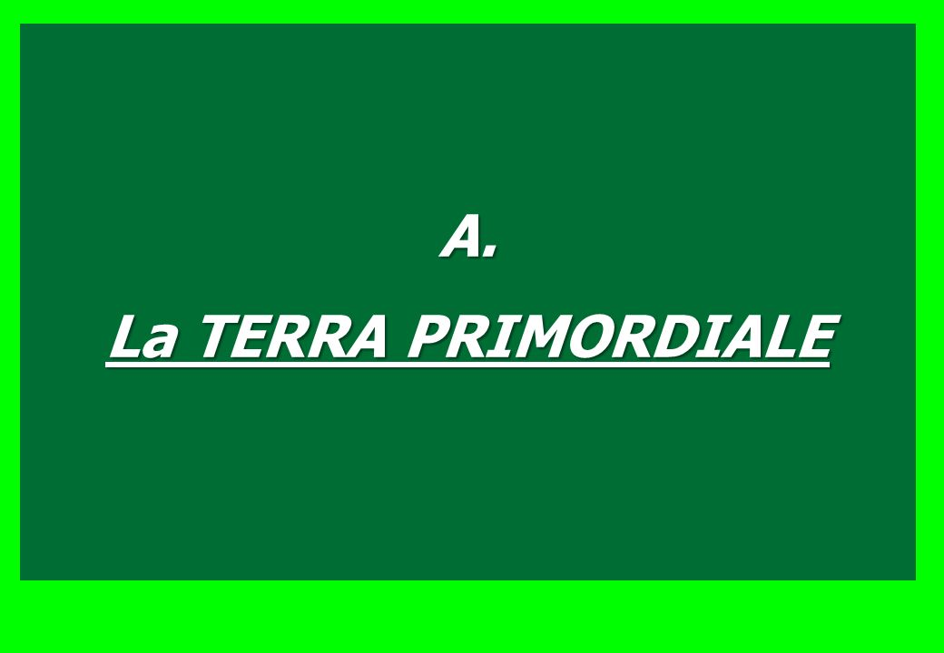 B. STRUTTURA CELLULA BATTERICA