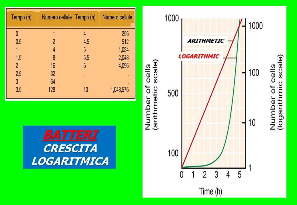 BATTERI CRESCITA LOGARITMICA ARITHMETIC LOGARITHMIC