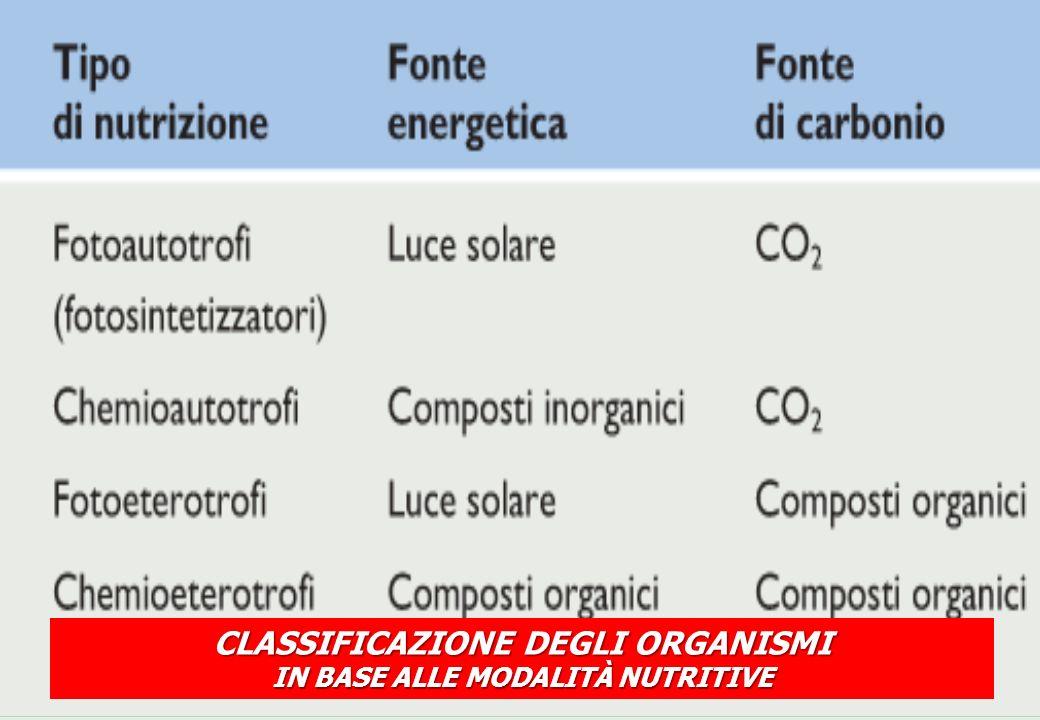 CLASSIFICAZIONE DEGLI ORGANISMI IN BASE ALLE MODALITÀ NUTRITIVE