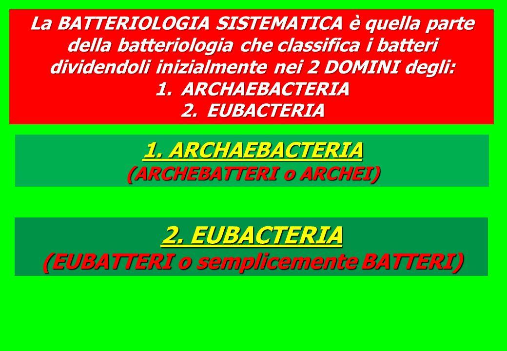 La BATTERIOLOGIA SISTEMATICA è quella parte della batteriologia che classifica i batteri dividendoli inizialmente nei 2 DOMINI degli: 1.ARCHAEBACTERIA 2.EUBACTERIA 2.
