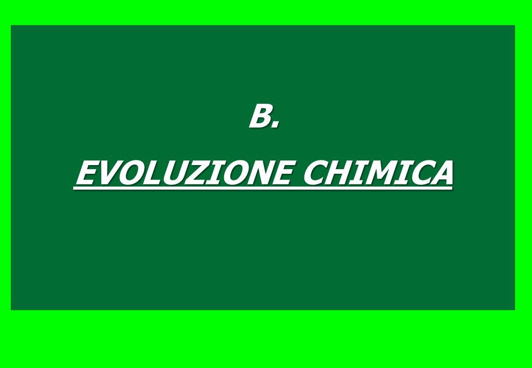 B. EVOLUZIONE CHIMICA