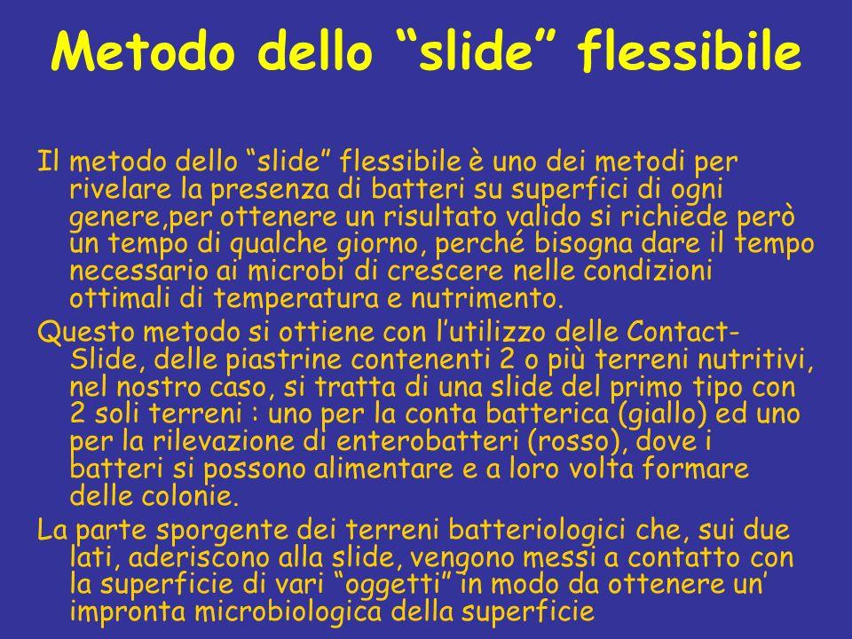 Metodo dello slide flessibile Il metodo dello slide flessibile è uno dei metodi per rivelare la presenza di batteri su superfici di ogni genere,per ot