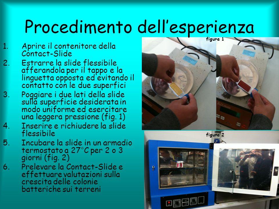 Procedimento dellesperienza 1.Aprire il contenitore della Contact-Slide 2.Estrarre la slide flessibile afferandola per il tappo e la linguetta opposta