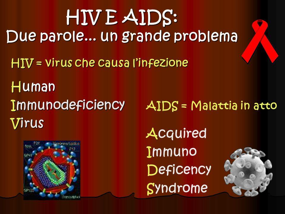 HIV = virus che causa linfezione Human Immunodeficiency Virus HIV E AIDS: Due parole... un grande problema AIDS = Malattia in atto Acquired Immuno Def