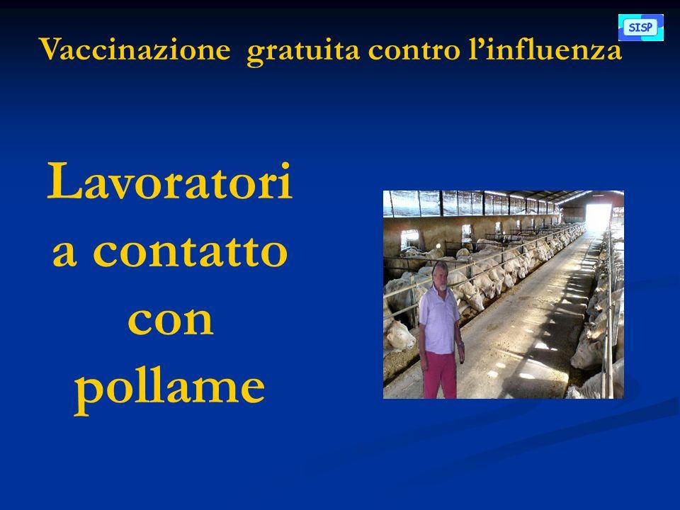 Vaccinazione gratuita contro linfluenza Lavoratori a contatto con pollame
