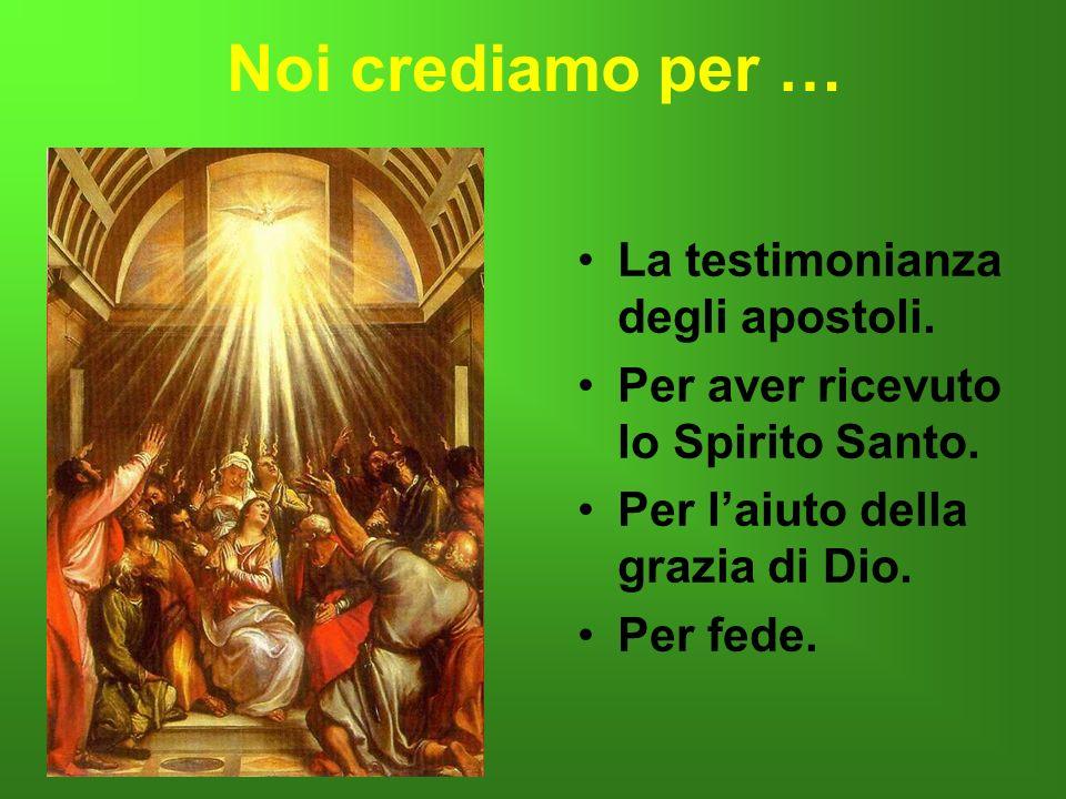Noi crediamo per … La testimonianza degli apostoli. Per aver ricevuto lo Spirito Santo. Per laiuto della grazia di Dio. Per fede..