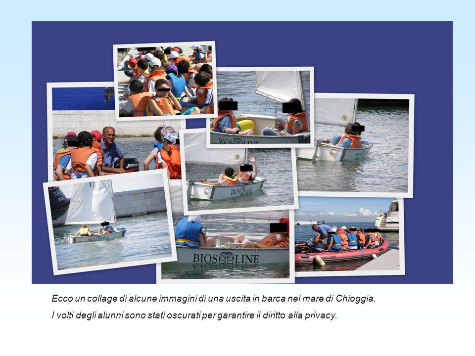 Ecco un collage di alcune immagini di una uscita in barca nel mare di Chioggia.
