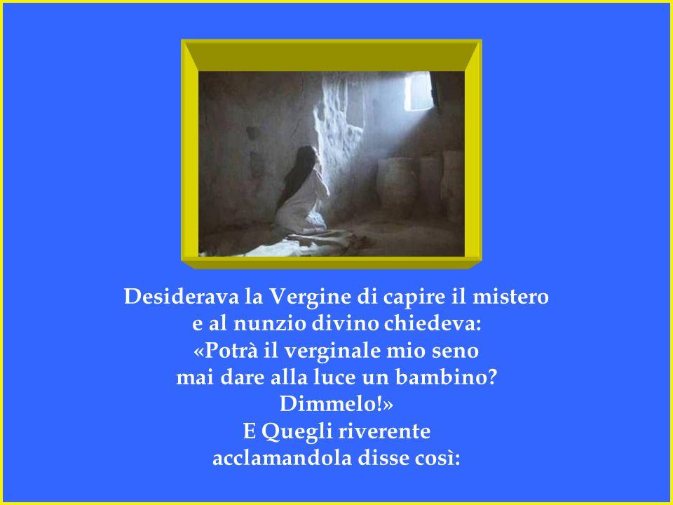 Ben sapeva Maria d'esser Vergine sacra e così a Gabriele diceva: «Il tuo singolare messaggio all'anima mia incomprensibile appare: da grembo di vergin