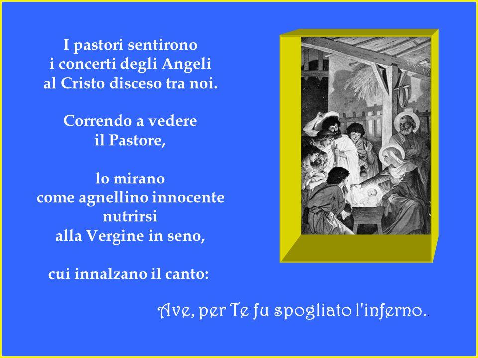 I pastori sentirono i concerti degli Angeli al Cristo disceso tra noi.