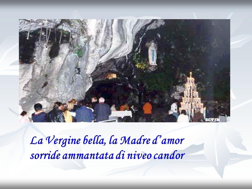 La Vergine bella, la Madre damor sorride ammantata di niveo candor