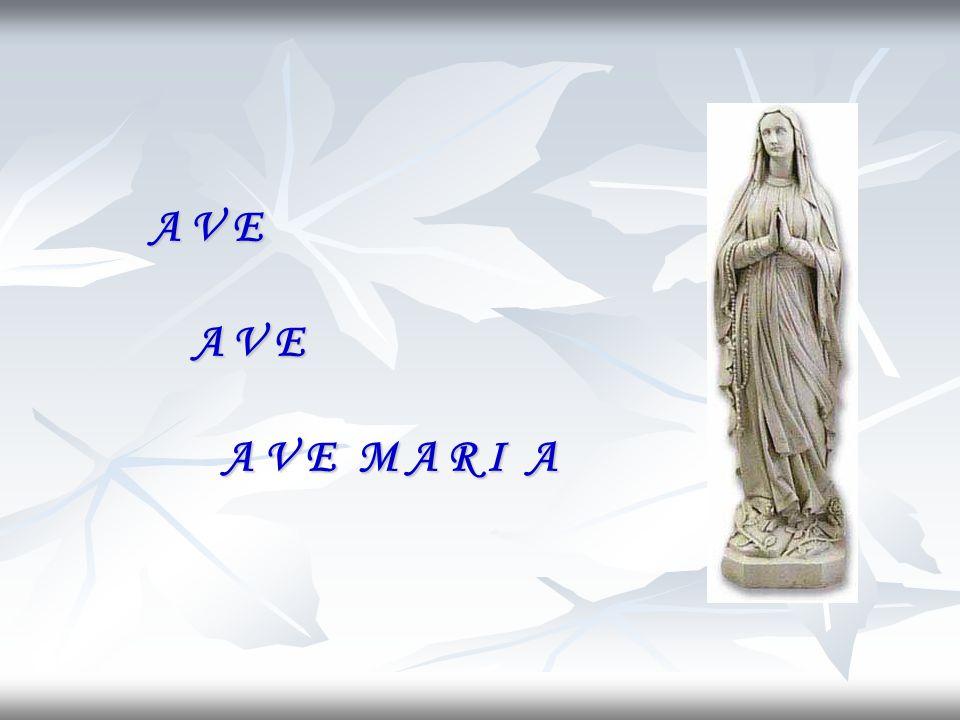 A tutti perdona le colpe e gli error; al mondo tu dona la pace e lamor