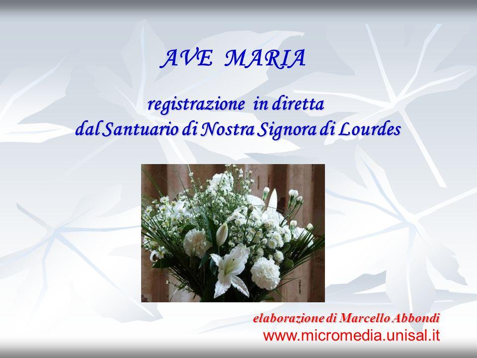 AVE MARIA registrazione in diretta dal Santuario di Nostra Signora di Lourdes elaborazione di Marcello Abbondi www.micromedia.unisal.it