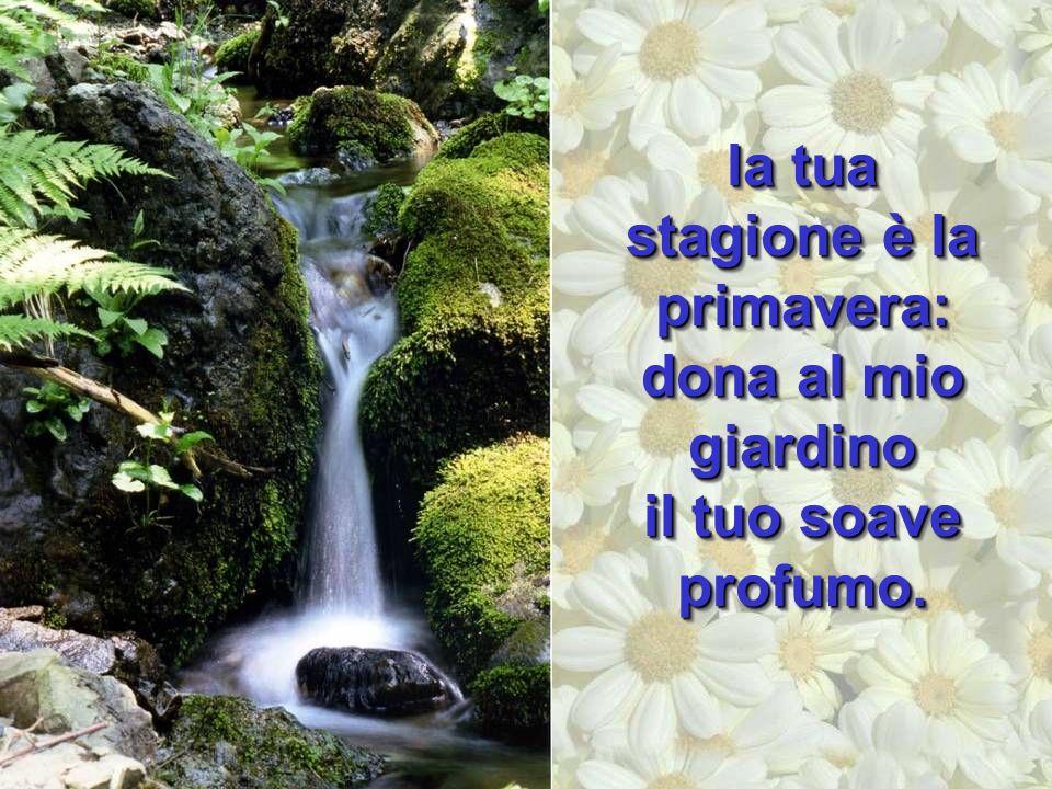 la tua stagione è la primavera: dona al mio giardino il tuo soave profumo.