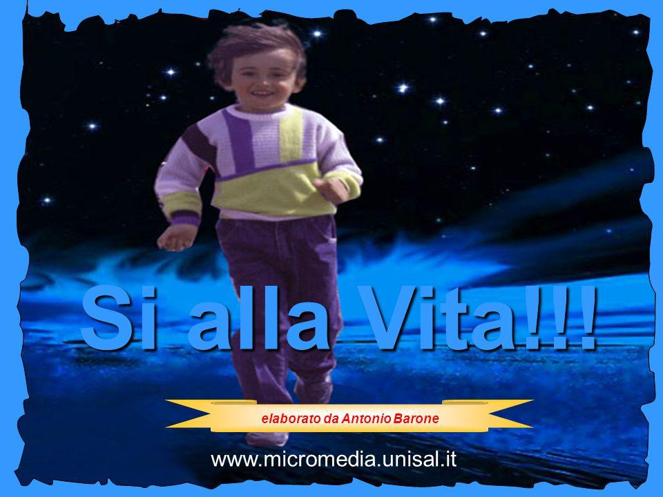 No allaborto Si alla Vita!!! elaborato da Antonio Barone www.micromedia.unisal.it