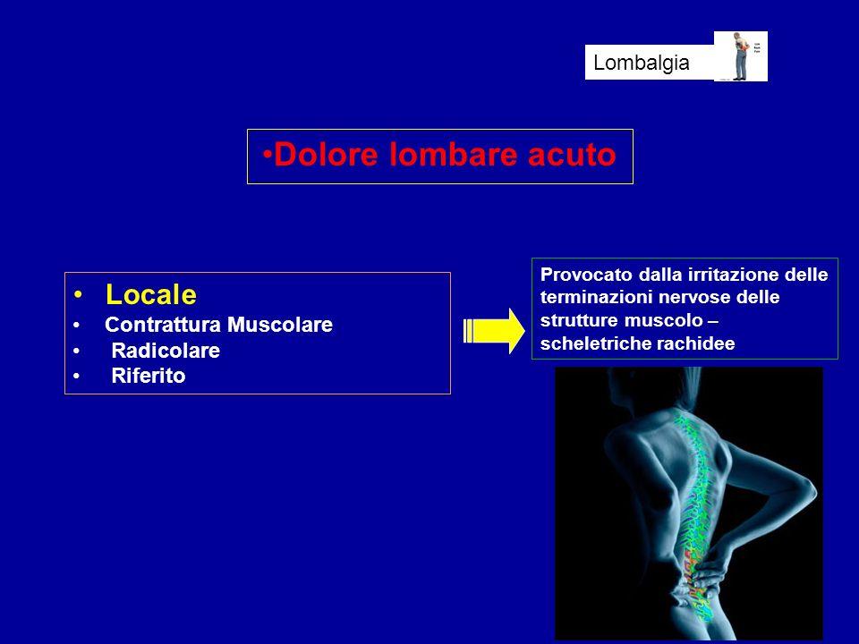 Dolore lombare acuto Lombalgia Locale Contrattura Muscolare Radicolare Riferito Provocato dalla irritazione delle terminazioni nervose delle strutture