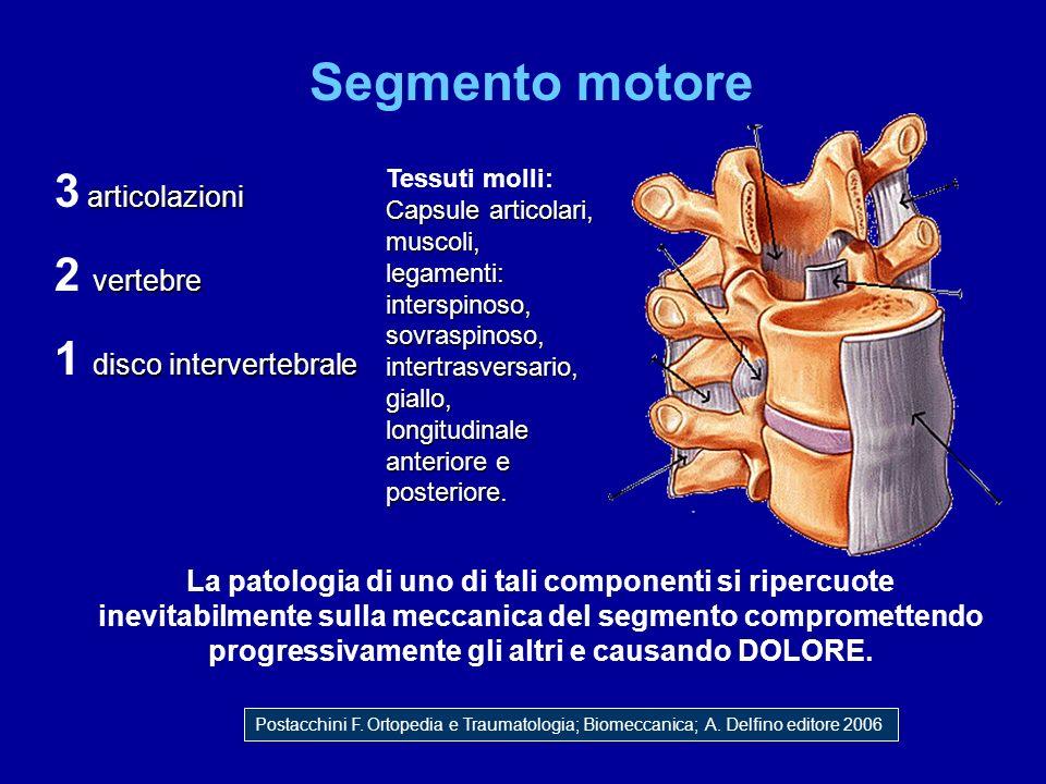 Segmento motore articolazioni 3 articolazioni vertebre 2 vertebre disco intervertebrale 1 disco intervertebrale La patologia di uno di tali componenti