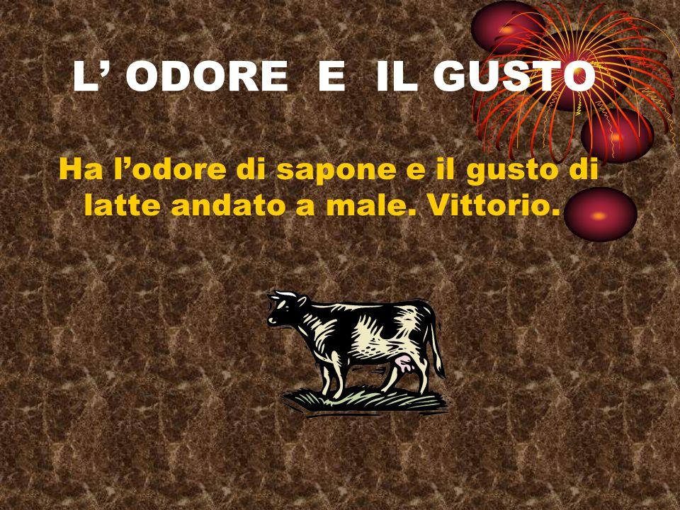 L ODORE E IL GUSTO Ha lodore di sapone e il gusto di latte andato a male. Vittorio.