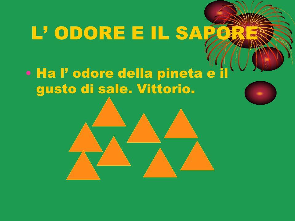 L ODORE E IL SAPORE Ha l odore della pineta e il gusto di sale. Vittorio.