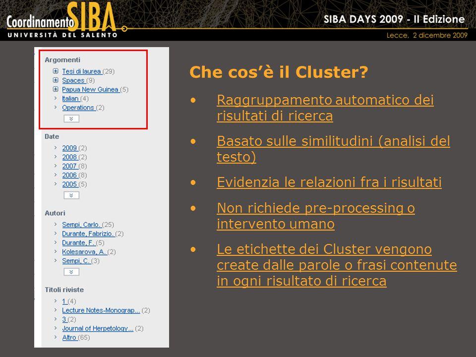 Che cosè il Cluster.