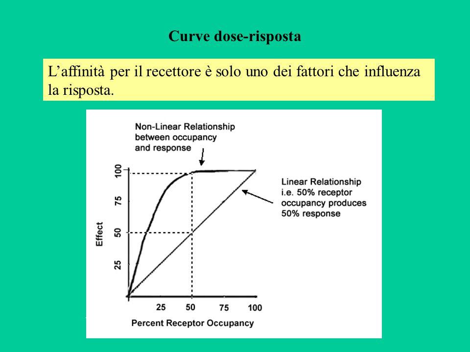 Curve dose-risposta Laffinità per il recettore è solo uno dei fattori che influenza la risposta..