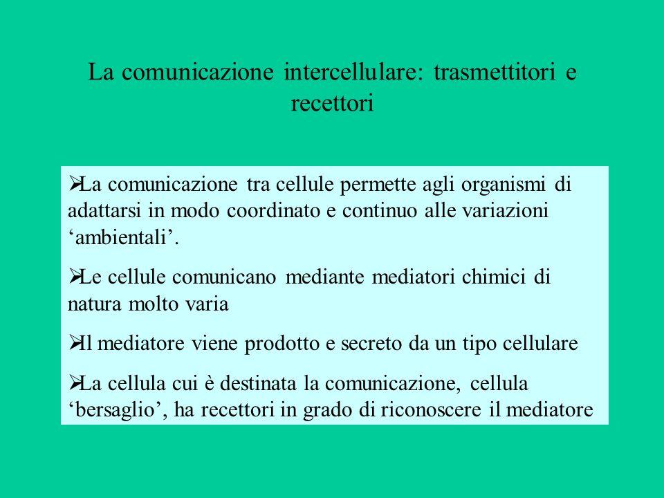 La comunicazione intercellulare: trasmettitori e recettori La comunicazione tra cellule permette agli organismi di adattarsi in modo coordinato e cont