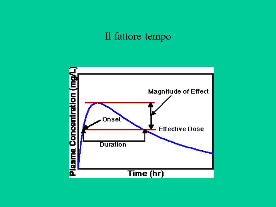 Il fattore tempo